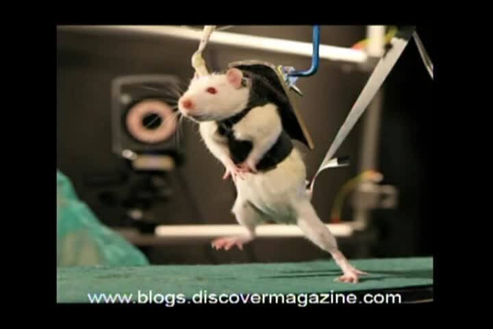 Science News – 2012/08/31