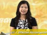 ศัพท์วิทย์กึ่งสำเร็จรูป – EM (Effective Microorganism)