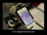 Science News – 2013/06/18