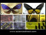 Science News – 2013/12/17
