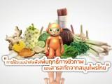 พลังวิทย์ คิดเพื่อคนไทย ตอน การใช้ระบบนำส่งเพื่อเพิ่มฤทธิ์ทางชีวภาพของสารสกัดจากสมุนไพรไทย