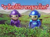 พลังวิทย์ คิดเพื่อคนไทย ตอน ชาไทยได้มาตรฐานโลก