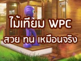 พลังวิทย์ คิดเพื่อคนไทย ตอน ไม้เทียม WPC สวย ทน เหมือนจริง