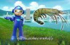 พลังวิทย์ คิดเพื่อคนไทย ตอน ศูนย์วิจัยและพัฒนาสายพันธุ์กุ้ง