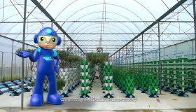 พลังวิทย์ คิดเพื่อคนไทย ตอน ระบบการปลูกพืชไร้ดินแนวตั้งแบบครบวงจร