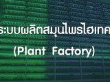 เทคโนโลยีโรงงานผลิตพืช (Plant Factory)