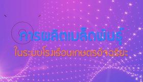 พลังวิทย์ คิดเพื่อคนไทย ตอน การผลิตเมล็ดพันธุ์ในระบบโรงเรือนเกษตรอัจฉริยะ