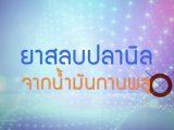 พลังวิทย์ คิดเพื่อคนไทย ตอน ยาสลบปลานิลจากน้ำมันกานพลู