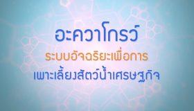 พลังวิทย์ คิดเพื่อคนไทย ตอน อะควาโกรว์ : ระบบอัจฉริยะเพื่อการเพาะเลี้ยงสัตว์น้ำเศรษฐกิจ