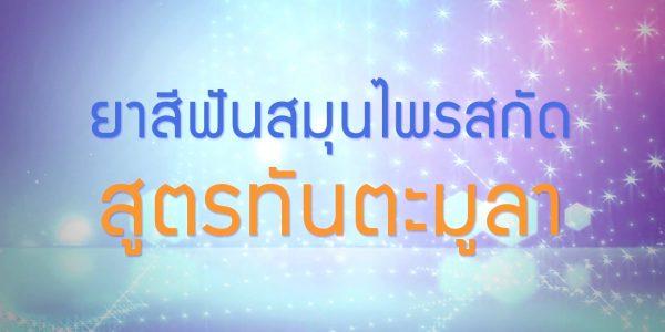 พลังวิทย์ คิดเพื่อคนไทย ตอน ยาสีฟันสมุนไพรสกัดสูตรทันตะมูลา