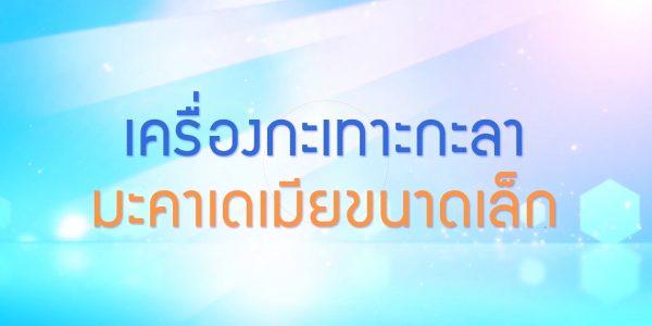 พลังวิทย์ คิดเพื่อคนไทย ตอน เครื่องกะเทาะกะลามะคาเดเมียขนาดเล็ก