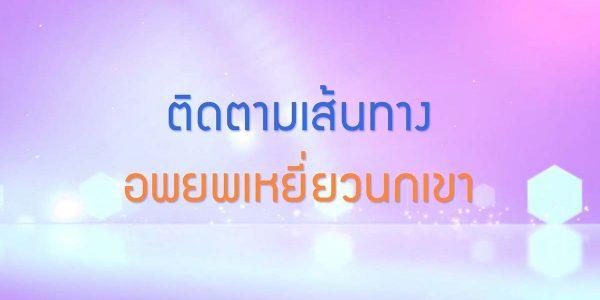 พลังวิทย์ คิดเพื่อคนไทย ตอน ติดตามเส้นทางอพยพเหยี่ยวนกเขา