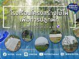 พลังวิทย์ คิดเพื่อคนไทย ตอน โรงเรือนโครงสร้างไม้ไผ่เพื่อการปลูกผัก