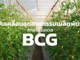 ขับเคลื่อนอุตสาหกรรมเมล็ดพันธุ์ ภายใต้โมเดล BCG